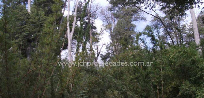 L41 LOTE DE 949 M2 EN VILLA CORRENTOSO – VILLA LA ANGOSTURA