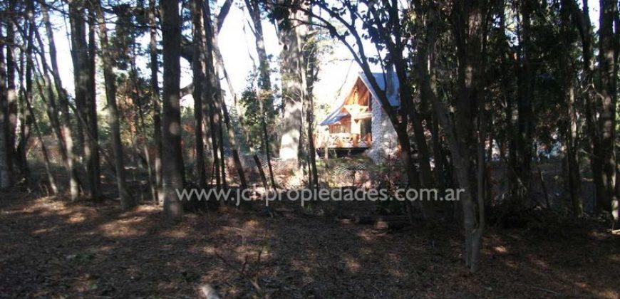 L47 LOTE DE 9.903 M2 EN LOMAS DEL CORRENTOSO – VILLA LA ANGOSTURA