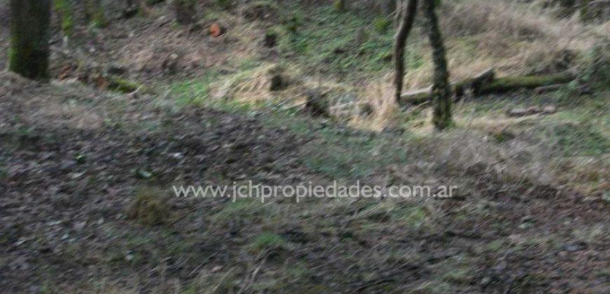 L24 FEI CURAM LOTE DE 1.967 M2 EN PH – LAS BALSAS – VILLA LA ANGOSTURA