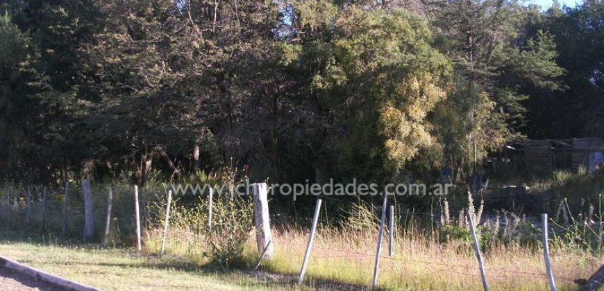 L75 LOTE DE 4.550 M2 CON FRENTE SOBRE RUTA 7 LAGOS – VILLA LA ANGOSTURA