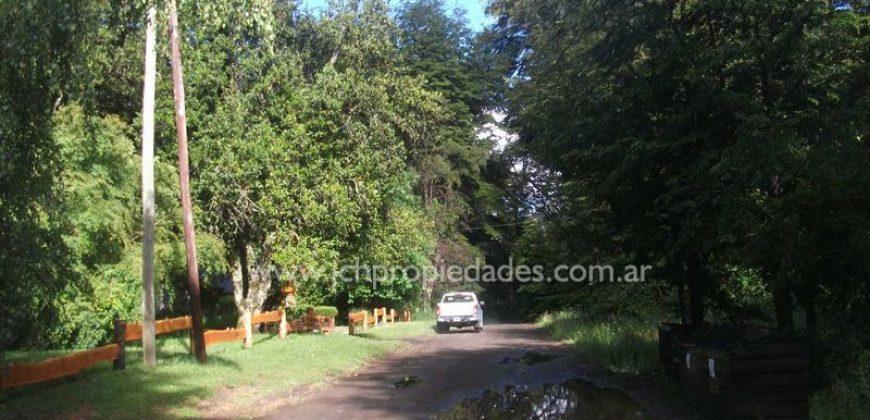 L73 LOTE EN ALTOS DE MANZANO DE 4.968 M2 – VILLA LA ANGOSTURA