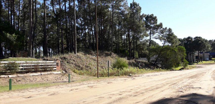 EXCELENTE LOTE EN PINAMAR -COSTA ATLÁNTICA – PROVINCIA DE BUENOS AIRES