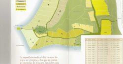 LOTE CON COSTA DE LAGO EN MUELLE DE PIEDRA (Cod. L84)